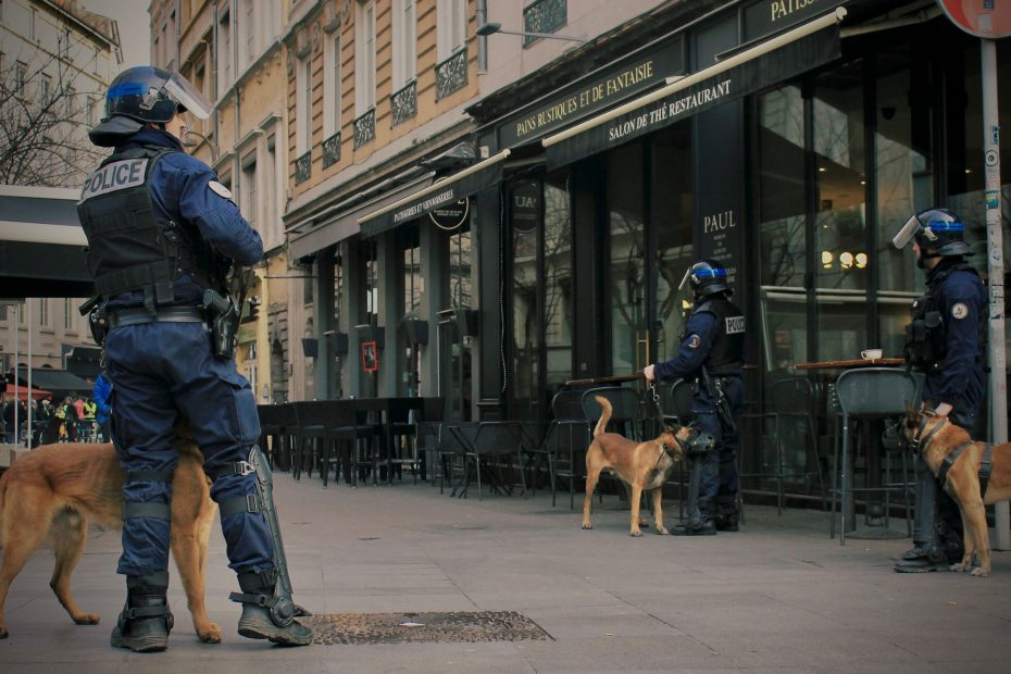 security dogs. security dog services